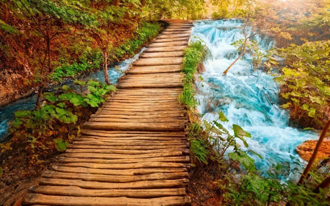 5 Jambatan Hidup